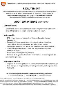 6.AUDITEUR INTERNE AI06